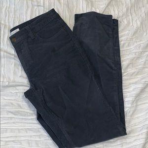 Blue/gray straight leg cords